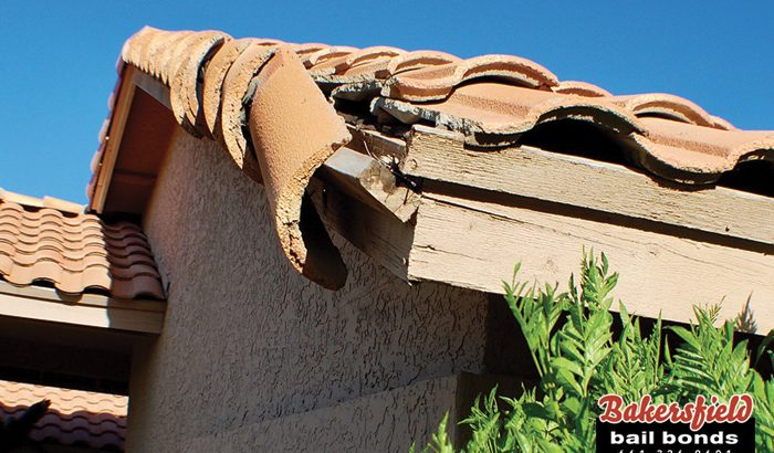 California Earthquake Survival Tips
