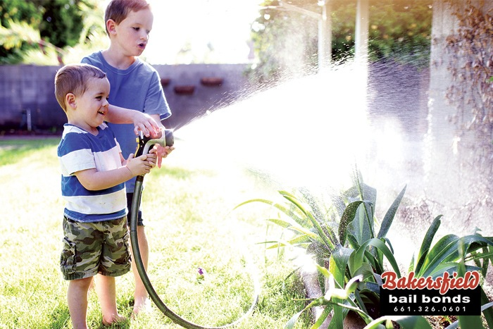 Watering Your California Lawn
